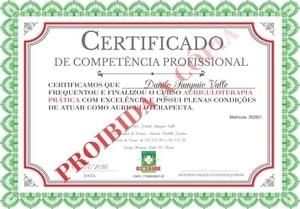 Certificado Curso Auriculoterapia Prática