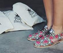 O que é a Insecta Shoes