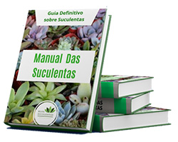 Manual das Suculentas - e-Book